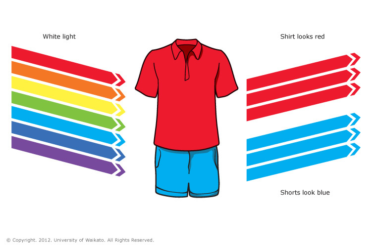 Red-shirt-and-blue-shorts20150805-30610-1aagaua.jpg
